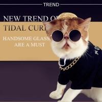 Eyeglasses / Glasses - Pet Dog Cat / Kacamata Hewan Anjing Kucing