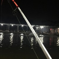 Joran Pancing Daiwa Provisor 180 Cm
