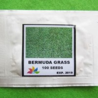 Grosir Original Bibit Benih Biji Rumput Bermuda Grass Mini Pack - GP