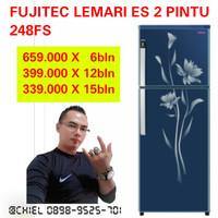 LEMARI ES 2 PINTU FUJITEC 248FS