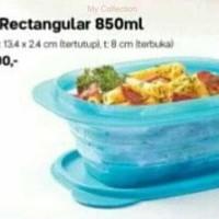 Tupperware Go Flex Rectangular Goflex Tempat Makan Fleksibel Murah