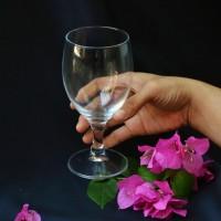 Harga Gelas 1 Lusin Hargano.com