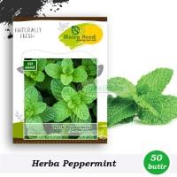 Benih-Bibit Herba Peppermint (Haira Seed)