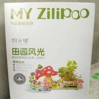 My Zilipoo Miniatur Rumah dan Taman