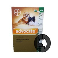 advocate for small dogs weighing 4 kg or less
