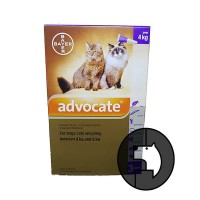 advocate for large cats weighing between 4 kg and 8 kg