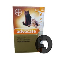 advocate for small cats weighing 4 kg or less and ferrets