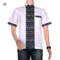 Baju Koko Batik Alvin Motif 13