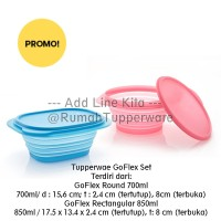 Tupperware Go Flex goflex Set 2pcs Tempat makan