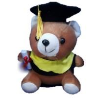 boneka tedyy bear wisuda murah