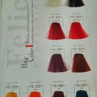 Harga original pewarna rambut felice hair color 60ml cat rambut | Pembandingharga.com