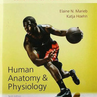 Study Guide - Human Anatomy And Physiology