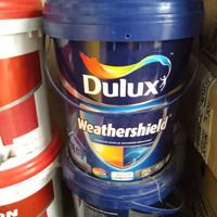 Dulux ws pro