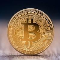 Coin Koin Fisik BTC Bitcoin Gold Plated Pajangan Koleksi Souvenir Gift
