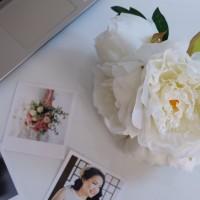 Bunga Plastik Peony - Putih