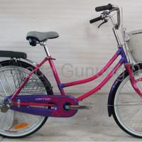 sepeda gunung united dominate Sepeda Mini Keranjang City Biks 24 Uni