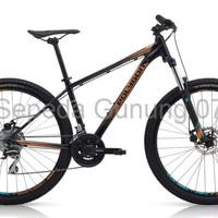 sepeda gunung united dominate Sepeda Gunung MTB 27 5 Polygon Premier