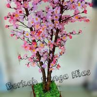 Download 55 Gambar Bunga Sakura Dari Kresek HD Paling Keren