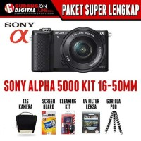Sony ILCE 5000L 16-50mm f3.5-5.6 OSS + Sony SDHC 8GB 15MB/s