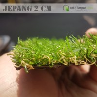 Harga rumput sintetis jepang 2 cm harga | antitipu.com