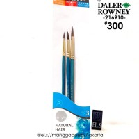 Daler Rowney Simply Brush Set 300 Hair