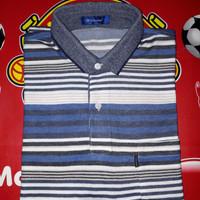 Polo Shirt Golden Bear Original
