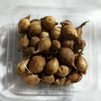 Homemade Bawang Putih Hitam (Black Garlic) Tunggal 100gr