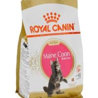 Royal Canin Kitten Maine Coon 36 - Makanan Anak Kucing - 400 gr