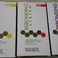 Harga Makarizo Pelurus Rambut Travelbon.com