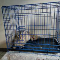 Kandang besi tebal cocok untuk anjing kucing musang dan kelinci