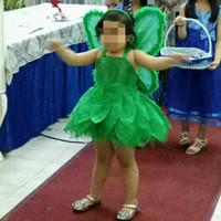 Kostum tinkerbell / baju pesta anak / baju kupu sayap / dress hijau
