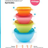 Sarvelier bowl set tupperware