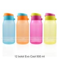 GROSIR Botol Minum 500 ml - Botol Minum Anak - Souvenir Ultah Evo Cool