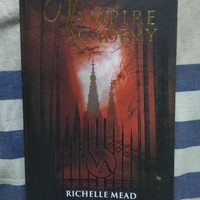 Novel Vampire Academy by Richelle Mead