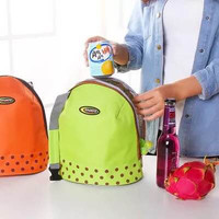 AZ. Cooler Lunch Bag