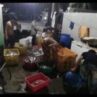 Kulit Ikan Tenggiri Giling