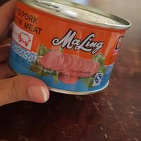 Ham Maling TTS