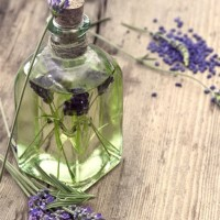 Lavender Pure Essential Oil 10 ml