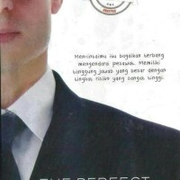 Novel novel the perfect husband