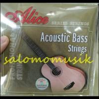 Senar Bass Akustik Merk Alice Original
