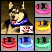 Kalung Anjing Kucing lampu LED menyala malam hari / Pet Collar FAS087