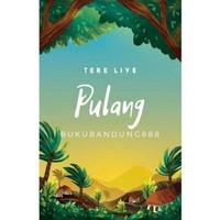Novel Pulang New Cover - Tere Liye