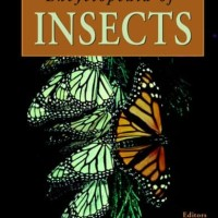 Encyclopedia of Insects - Vincent H. Resh (Animals)