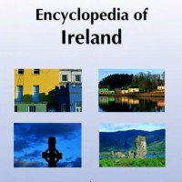 Encyclopedia of Ireland - Ciaran Brady (State)