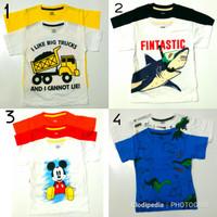 Baby Victory Baju Anak Laki Laki Size 1-3Y