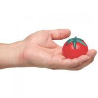 Squishy Buah Tomat Anti Stress unik lucu mainan anak lentur