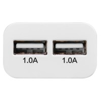 Hoco UH202 Dual USB Port Quick Charger EU Plug 10A