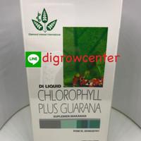 Harga Liquid Chlorophyll Travelbon.com