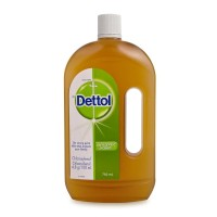 Dettol Antiseptic Liquid - 750 mL