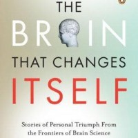 The Brain That Changes Itself: Stories of Personal Triumph - Norman D